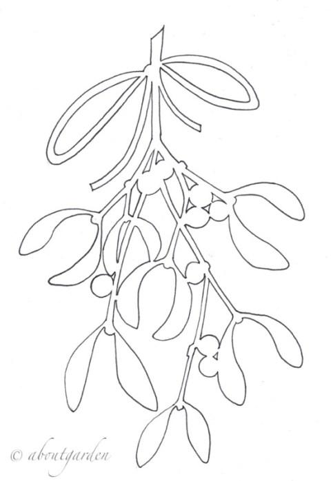 vischio disegno
