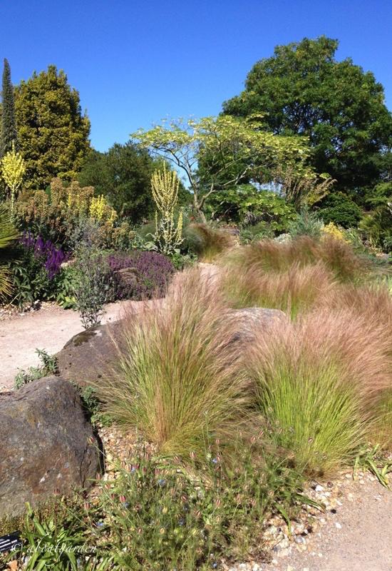 giardino secco Hyde Hall