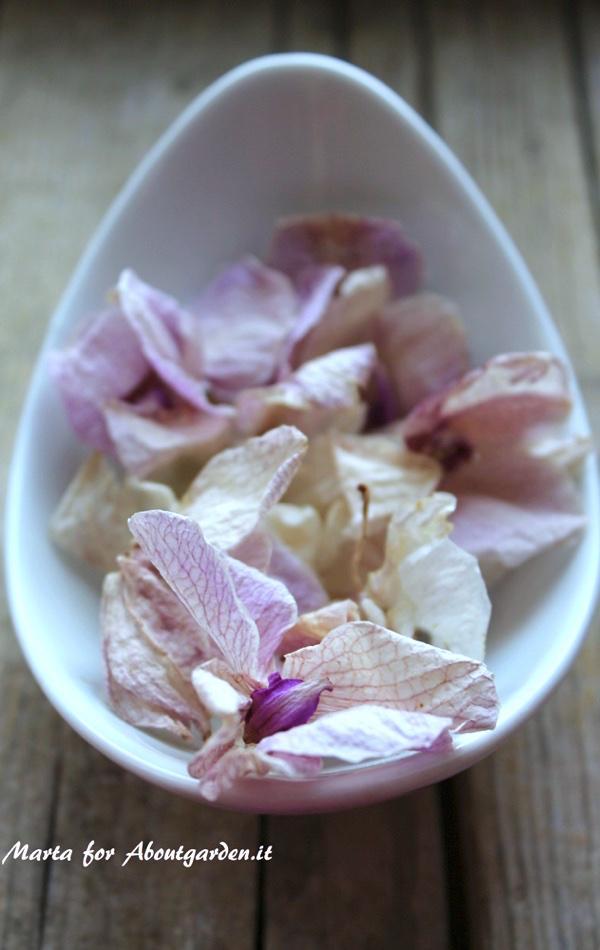 petali-pot-pourri