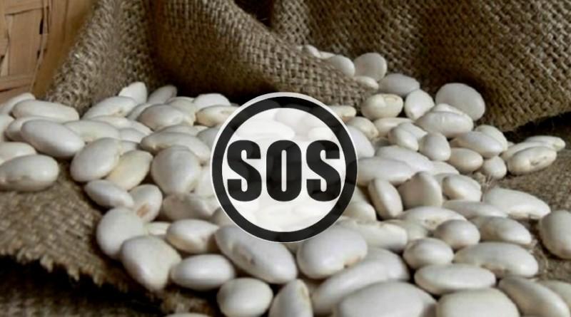 Καστοριά: Σε αδιέξοδο οι παραγωγοί φασολιών