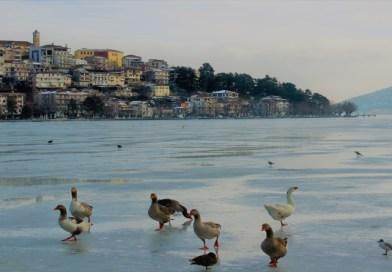 Η παγωμένη λίμνη των κύκνων – φωτογραφίες