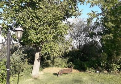 Το παγκάκι με την καλύτερη θέα στην Καστοριά – φωτο