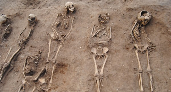 48 skeletons discovered in