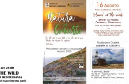 BLOWIN'-IN-THE-WIND-Natura-in-concerto-Massa-Lubrense