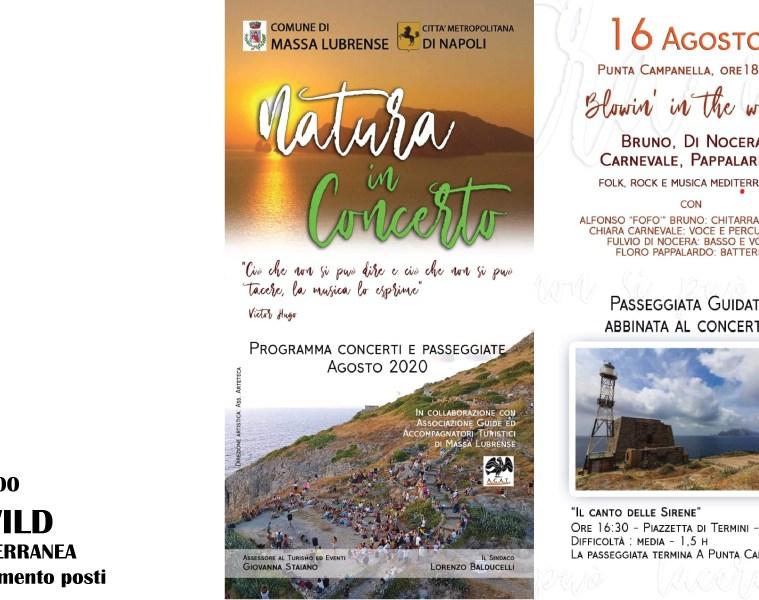 BLOWIN'-IN-THE-WIND-Natura-in-concerto-Massa-Lubrense