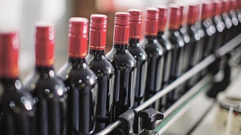Вино на Дону: в Ростове обсудили развитие отрасли
