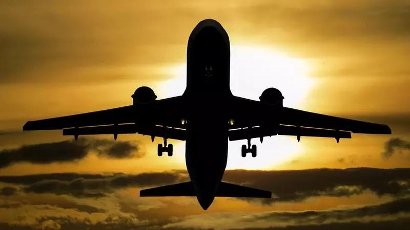 Контрабандная алкогольная продукция обнаружена на борту самолета
