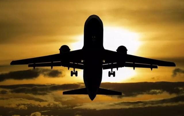 Контрабандная алкогольная продукция обнаружена на борту самолета, следовавшего из Испании в Санкт-Петербург.