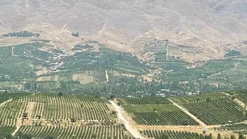 Узбекистан. Винная Terra Incognita