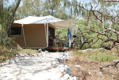 Our tent, Wilson Island