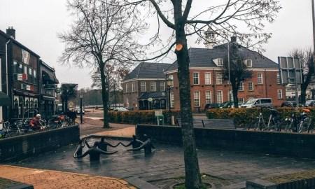hollanda-egitim-kursu