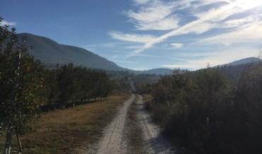 Cassino – Jerusalem: Day 33 Edessa