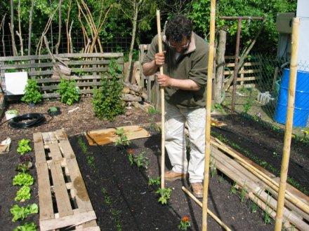 fabriquer une pergola en bambou abri jardin bois france. Black Bedroom Furniture Sets. Home Design Ideas