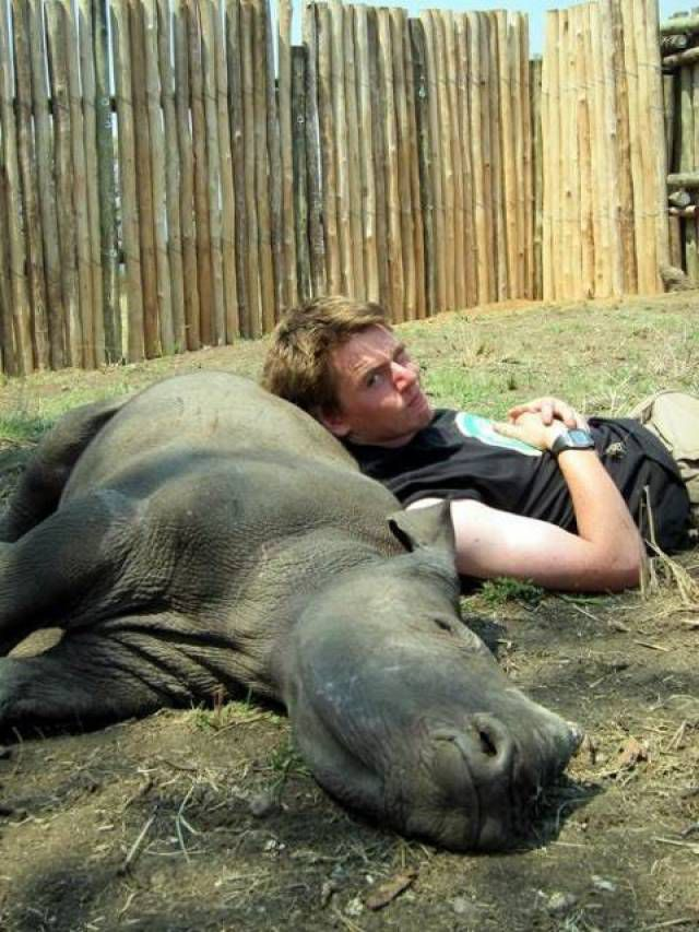 baby rhino nap