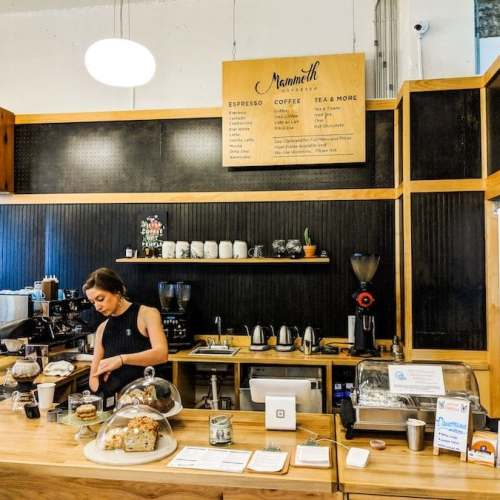 New Orleans Coffee Shops – TOP 5 New Orleans Cafes