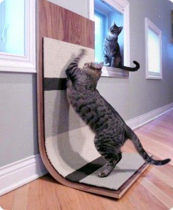 rascadores-para-gatos-fotos4