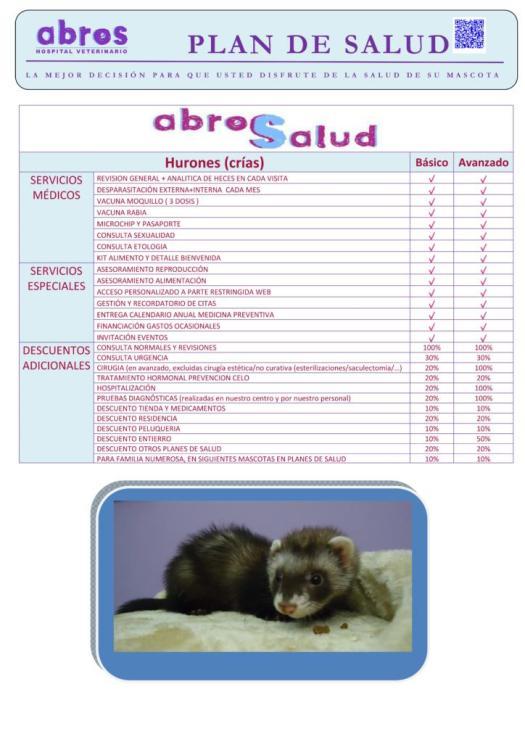 abrosalud huron cachorro 1