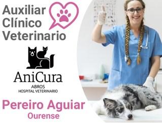 curso-auxiliar-clinico-veterinario-anicura-abros-pereiro-aguiar-ourense