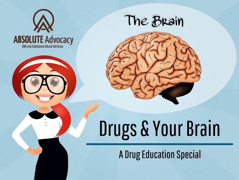 Featured-Image-B1_Drug-Education-Drugs-and-Your-Brain