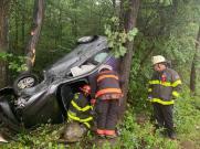 Vehicle crash into the trees Paratech Strut (7)