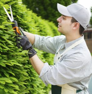 4 Ways A Landscape Service Can Help Your Business