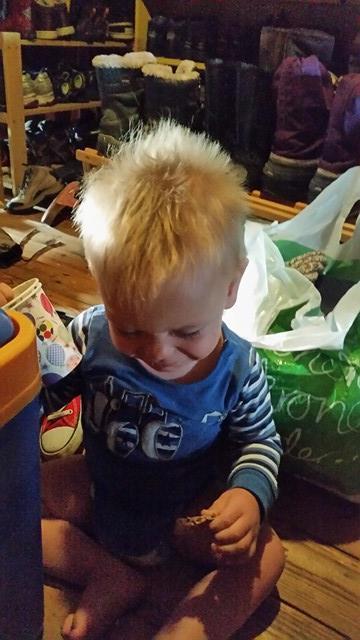Levi har hjulpet meg og vi har også kost oss masse og gått mange turer! For en herlig liten gutt!