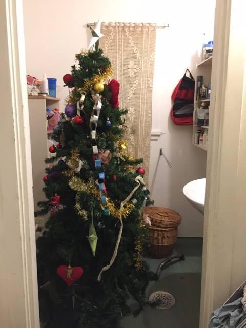 Juletre på badet. Noldus!!!?