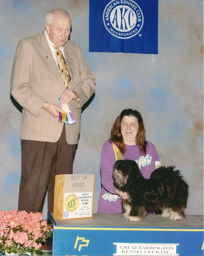 AKC Dog show, showing the Lhasa Apso is so much fun! Best-of-breed!