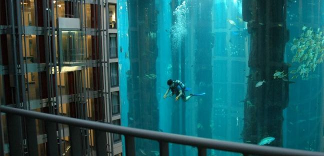 acquario cilindrico più grande del mondo 2