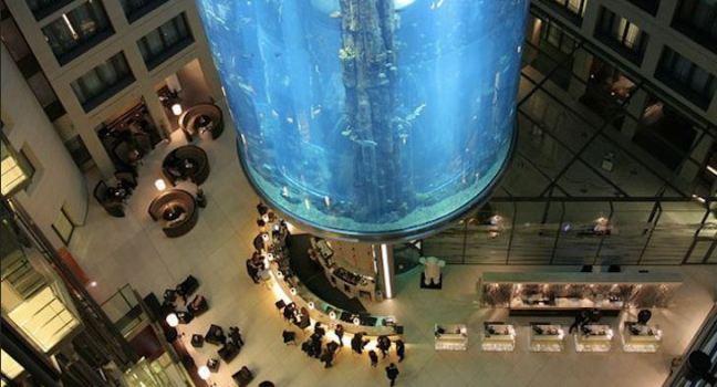 acquario cilindrico più grande del mondo