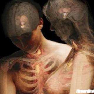 100 curiosità sul corpo umano che non tutti sanno - Di tutto un po'