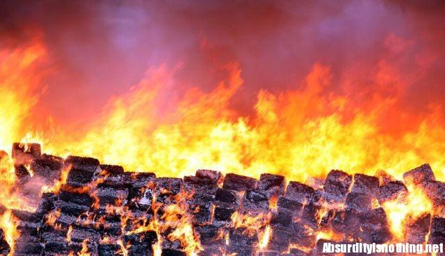 100 tonnellate di marijuana bruciate in Messico (6)