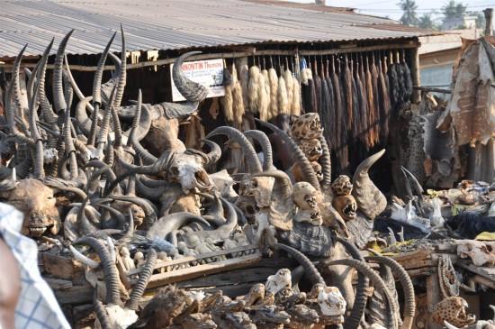 Akodessewa fetish market (2)