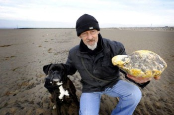 Trova sulla spiaggia del vomito di balena che vale £100,000
