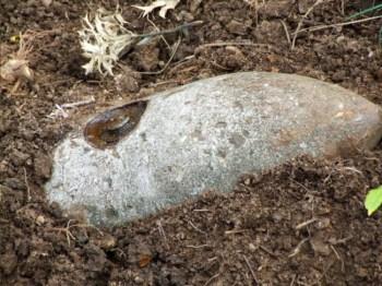 Trova una bomba inesplosa e la lava nel lavandino
