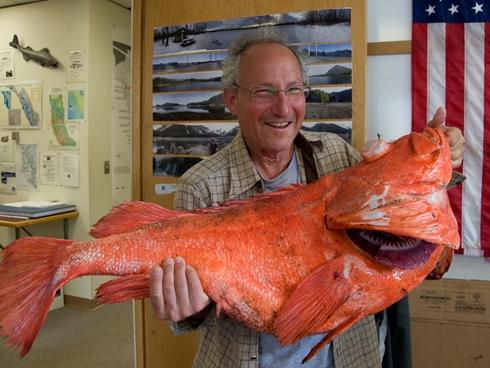 Alaska, viene pescato un pesce di 200 anni