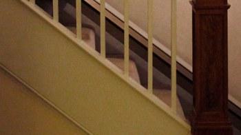 Rimane incastrata nella ringhiera delle scale mentre fa sesso