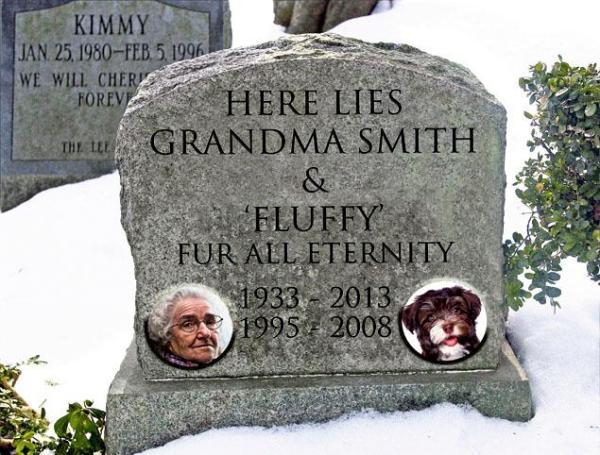 New York permette alle persone di essere sepolte con i propri animali domestici (1)