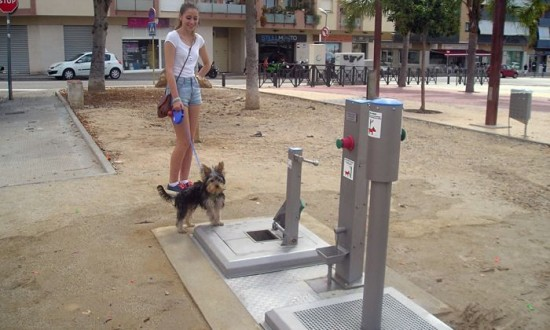 Bagni pubblici per cani in un paesino spagnolo – Absurdity is Nothing