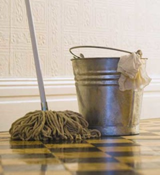 Ladro pulisca la casa