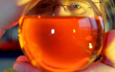 Scambiano miele per arma chimica: evacuato edificio per un errore di traduzione