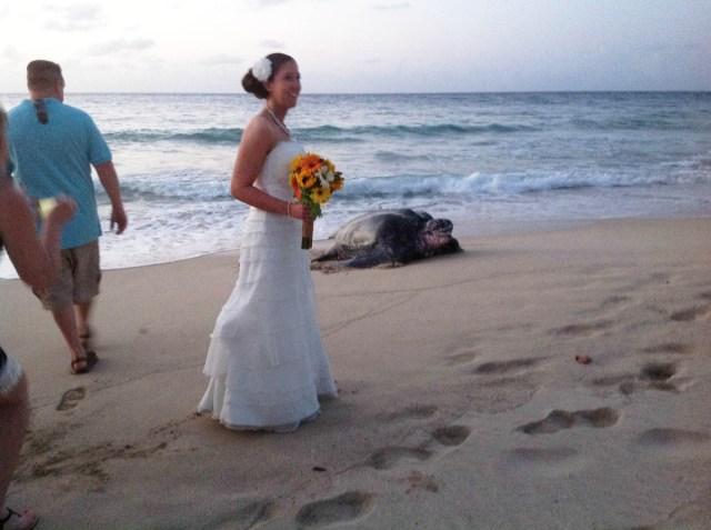 I migliori photobomber ai matrimoni (10)