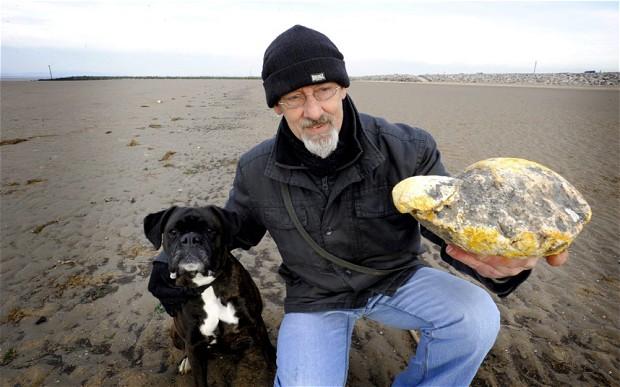 Il vomito di balena che sembrava valere £100,000? È una semplice pietra