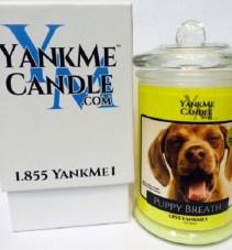 yankme candele scherzo3
