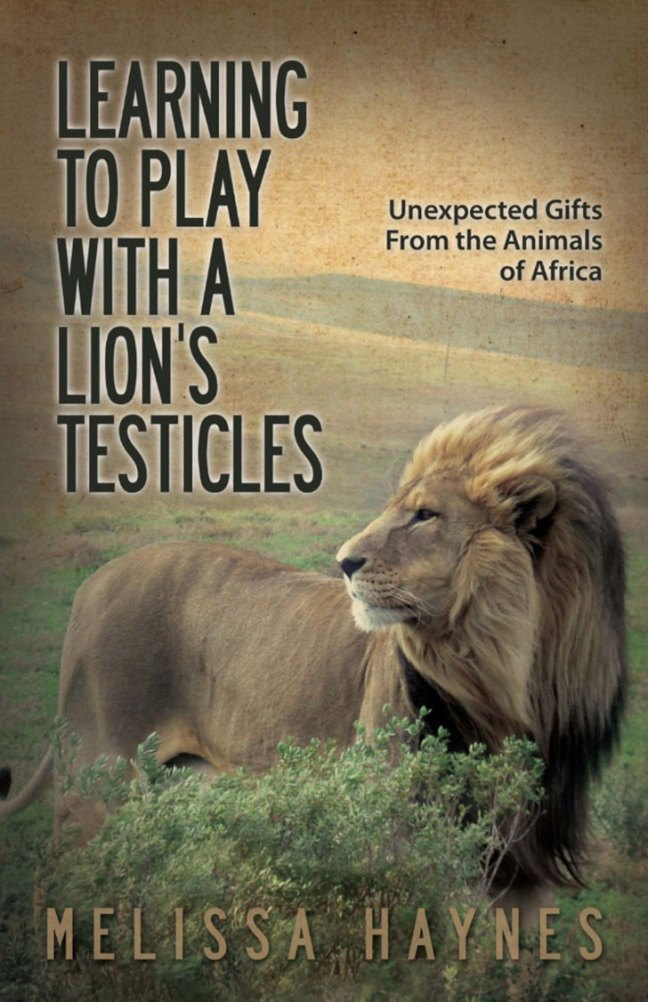 learning-to-play-lions-testicles-amazon