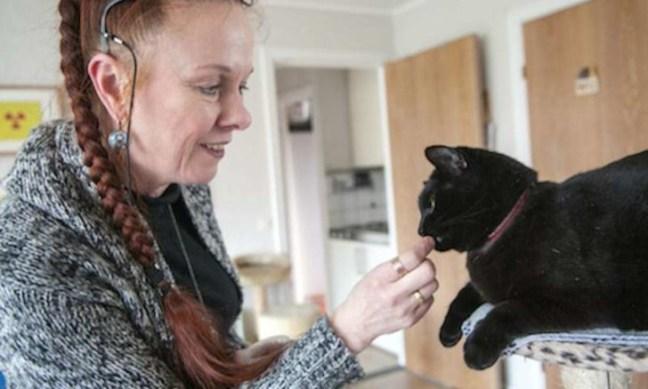 E se i gatti miagolassero con un accento?
