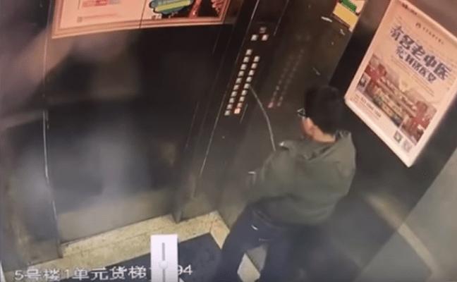 pipi-ascensore