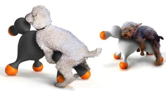 sex-toys-per-cani