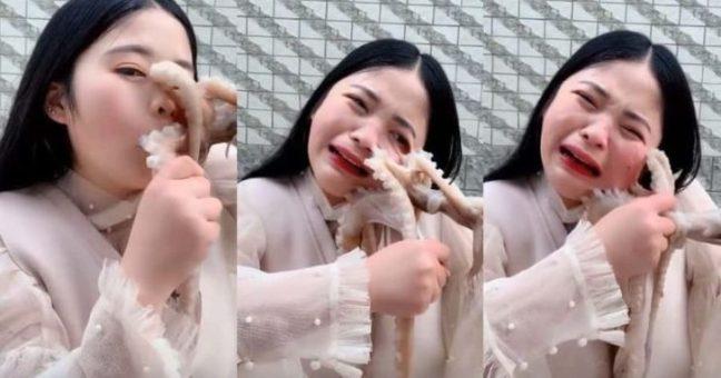 mangia-polpo-vivo