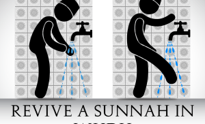 Revive a Sunnah in Wudu-  Go between your Fingers and Toes